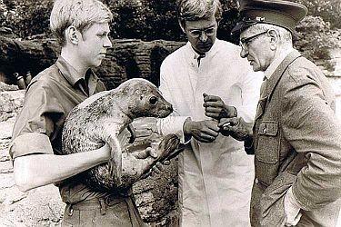Tierparkdirektor Claus Hagenbeck (M.) im Jahr 1970