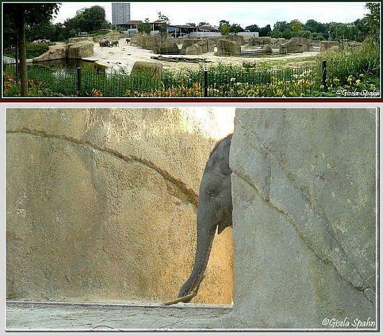 Elefantenpark 19.12.07 - 43 Fotos