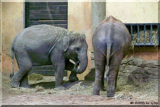 Kandy und Lai Sinh
