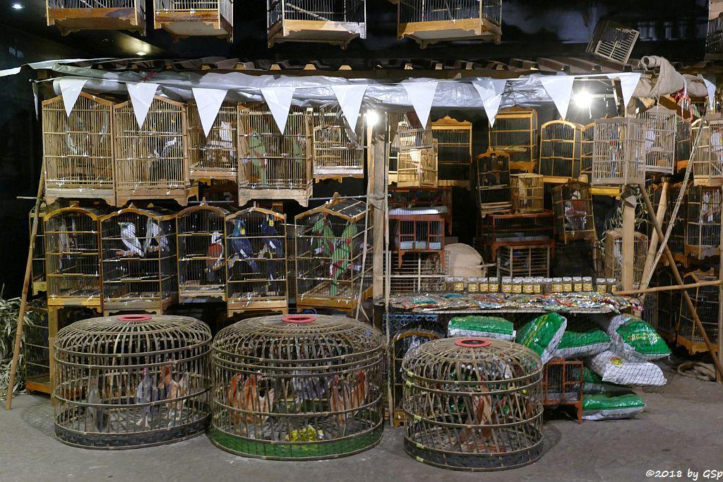 Jalan Pramuka Bird Market