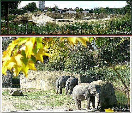 Elefantenpark 06.10.07 - 56 Fotos