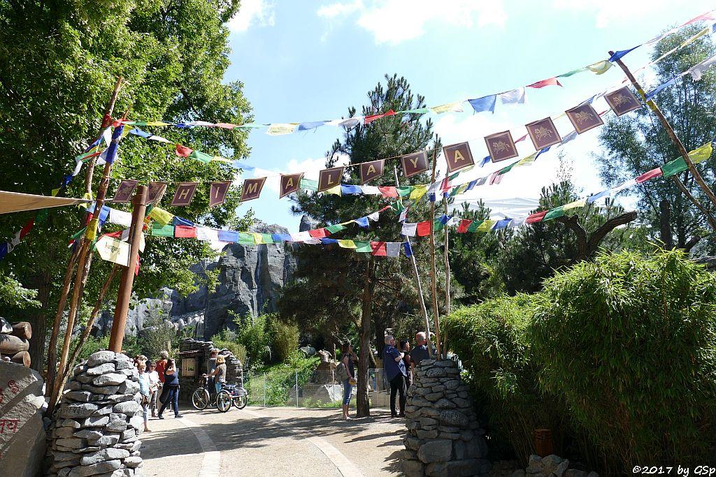 Hochgebirgslandschaft Himalaya