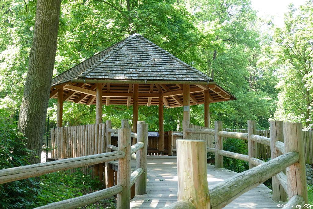 Rothirsch-Pavillon