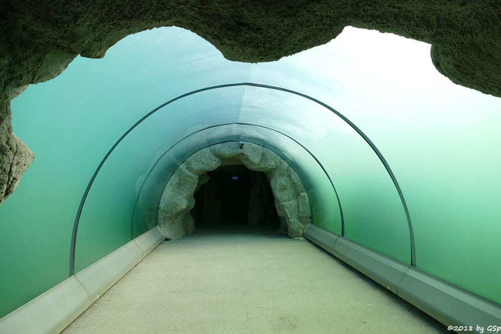 Barrow-Tunnel