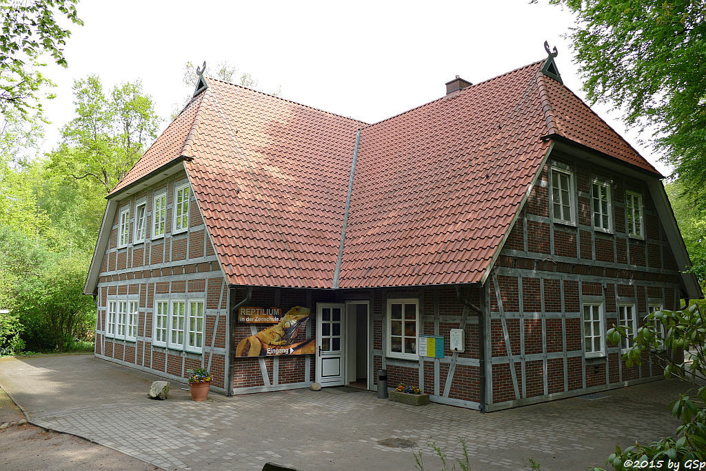 Zooschule/Reptilium