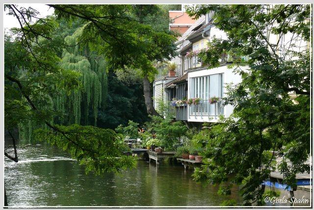 am Ufer der Gera