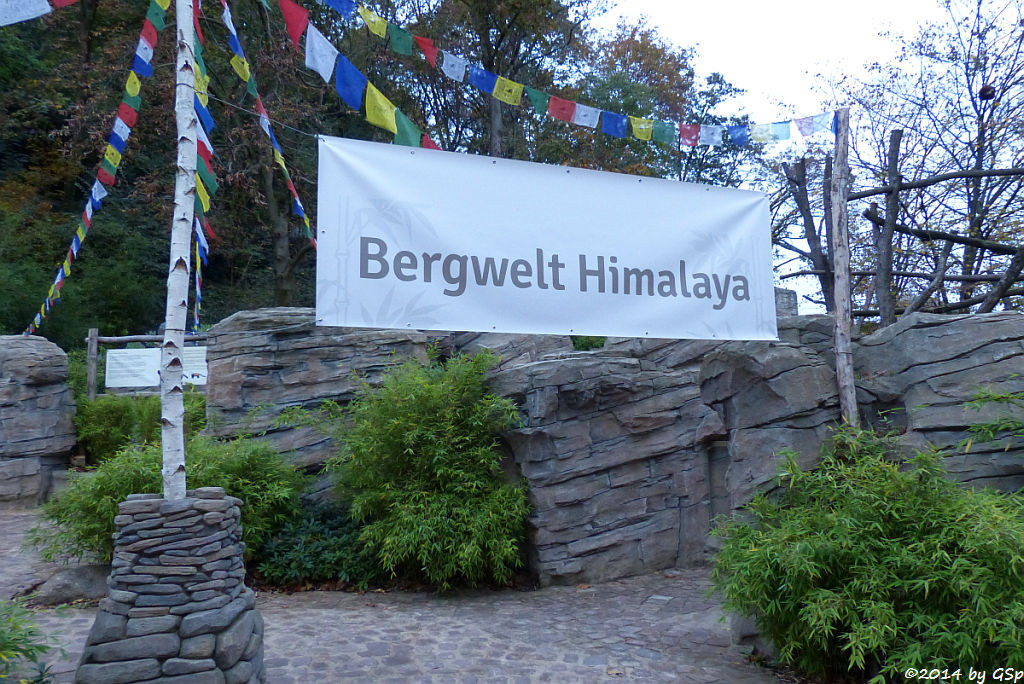 Bergwelt Himalaya