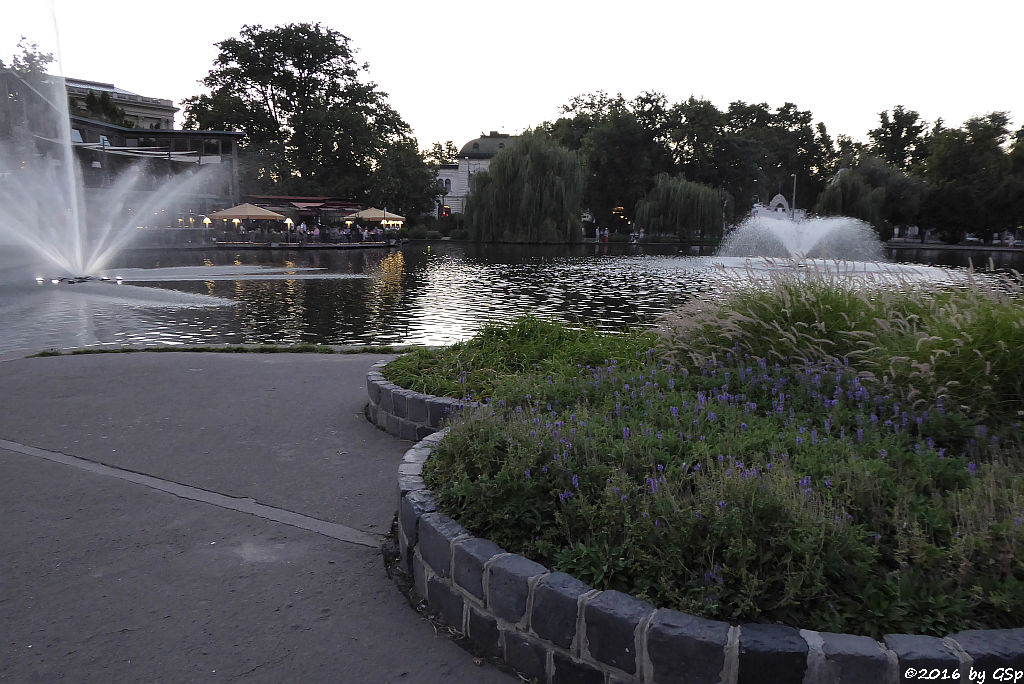 Stadtwäldchen-See