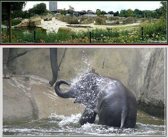 Elefantenpark 10.09.08 - 40 Fotos