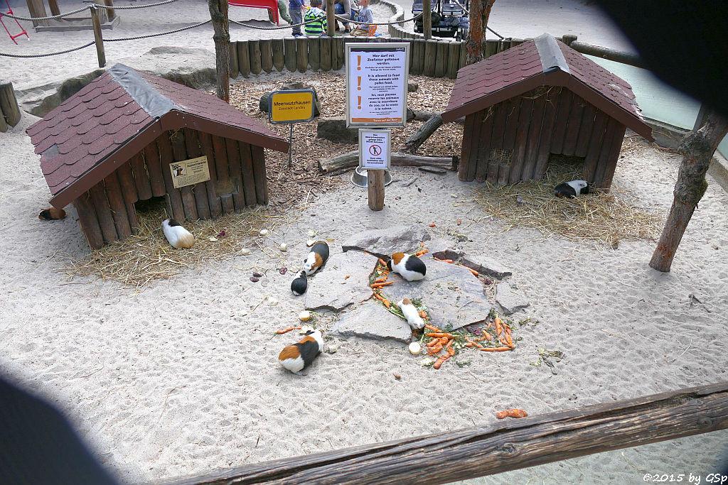 Meerwutzhausen