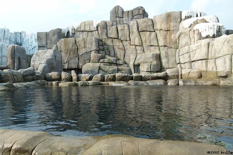 Walross- und Seehund-Anlage