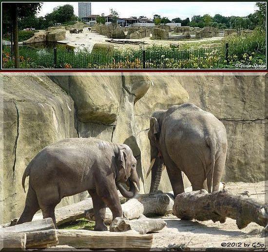 Elefantenpark 27.03.12 - 47 Fotos