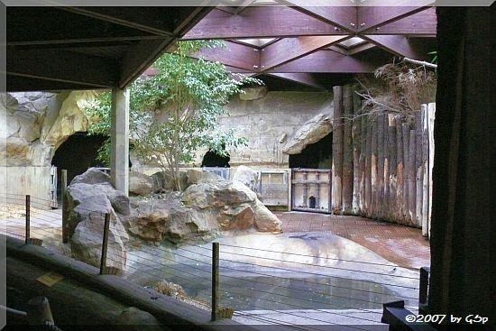 Nashornhalle im Elefantenhaus