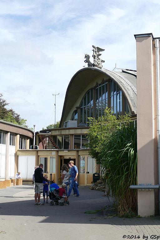 BIOTOPIA Rivièrahal