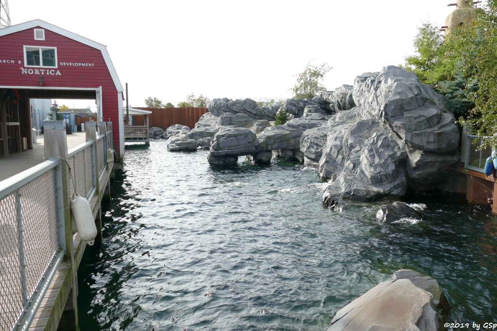 Robbenhafen