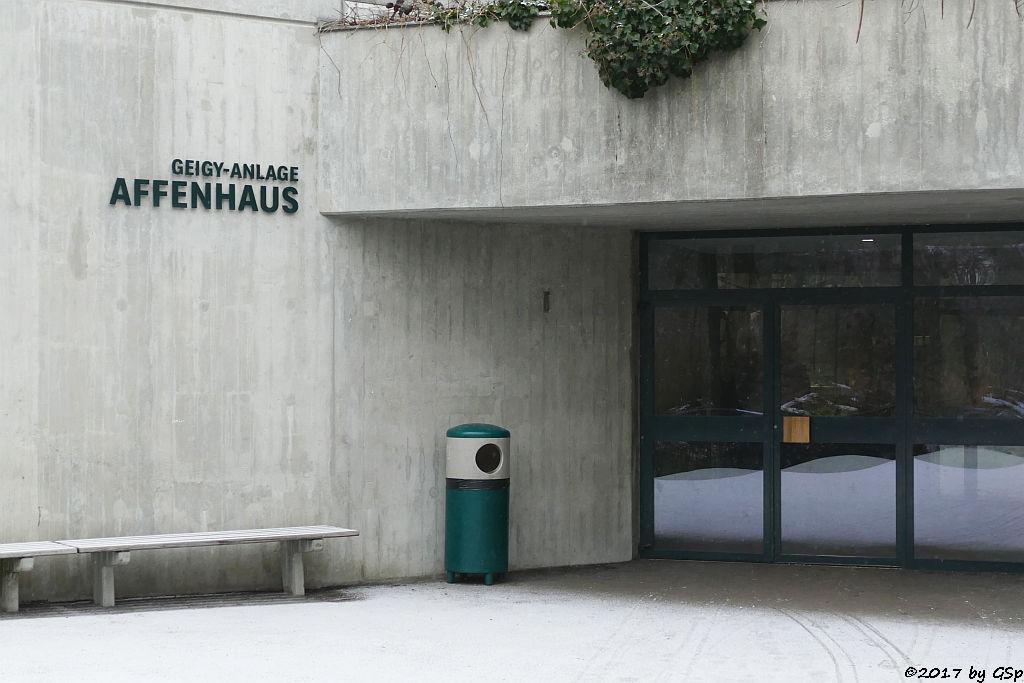 Geigy-Anlage Affenhaus