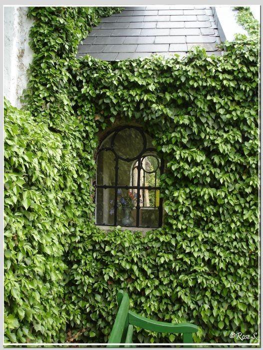 Die Fischerkirche in Arnis: Das Eingangsfenster......