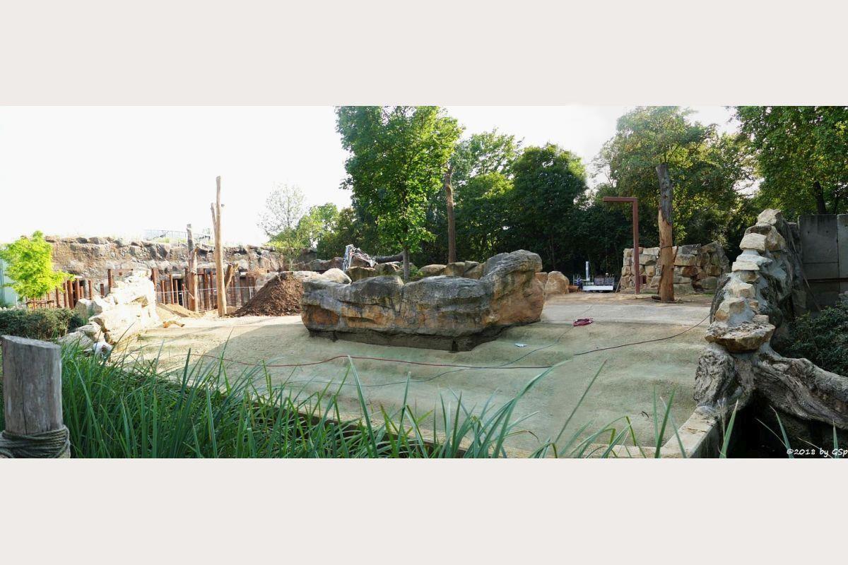 Elefanten-Außenanlage