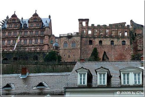 Ruinen des Kurfürstlichen Schlosses