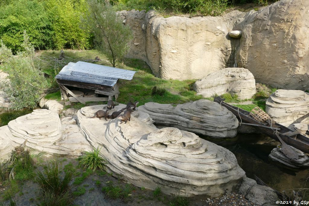 Otterbach