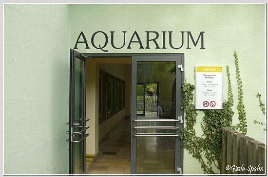 Eingang Aquarium