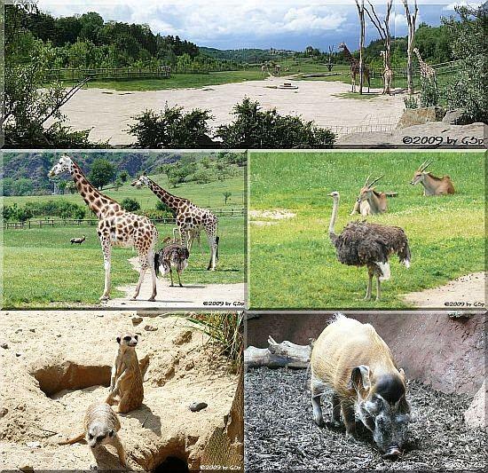 Afrika-Panorama - 33 Fotos