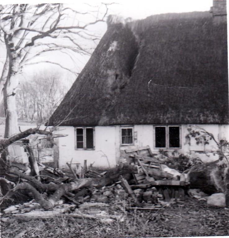 Sturmschaden 1967