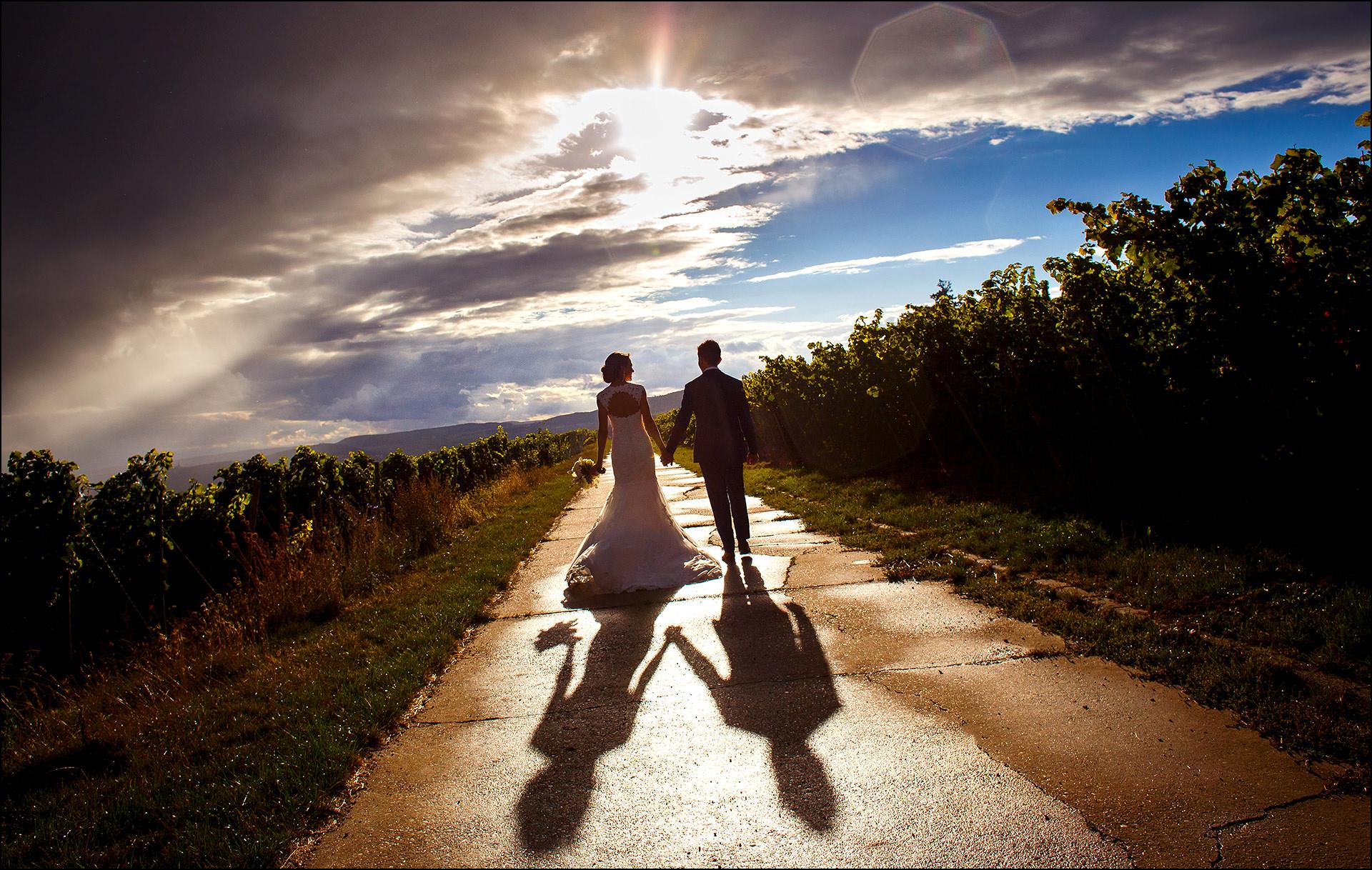Exklusiver Hochzeitsfotograf im Rheingau