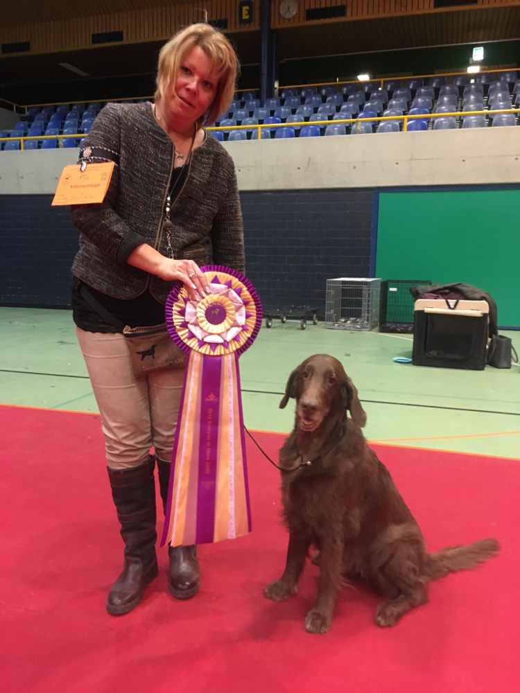 Best Veteran in Show 2016