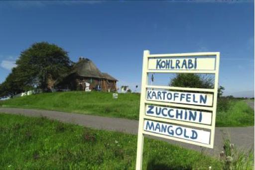 Touristen-Information