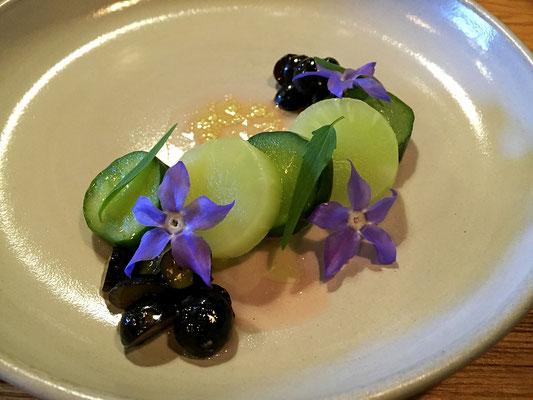 cucumber and celtuce farm spirit