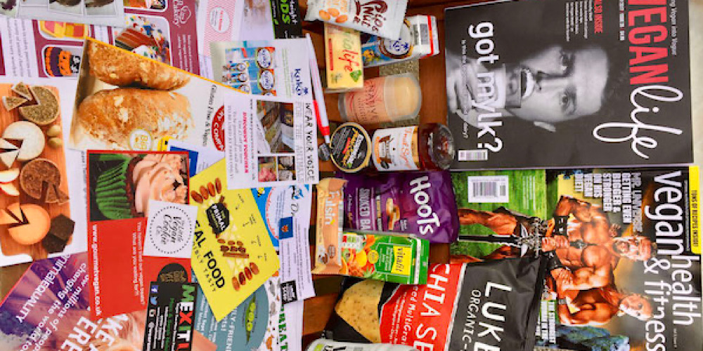 all the cool Things at the Leicester Vegan Festival