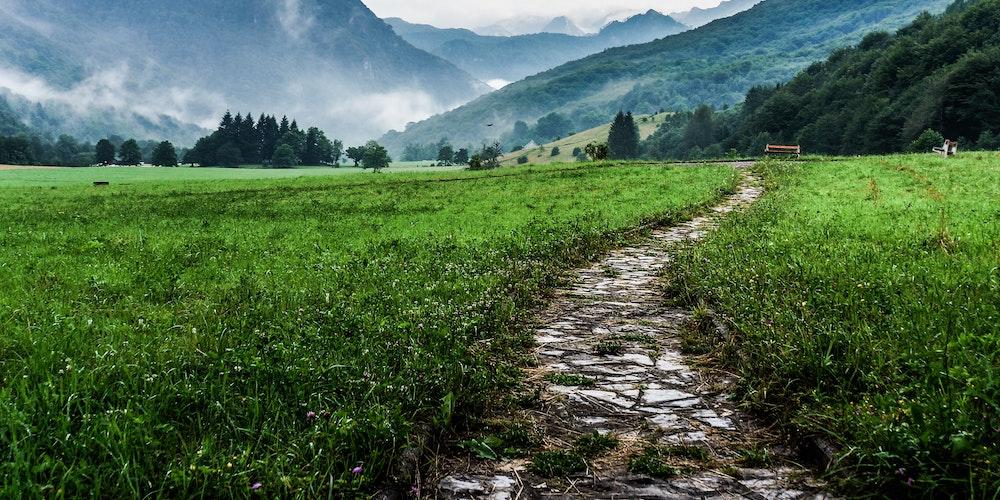 walking makes you happy
