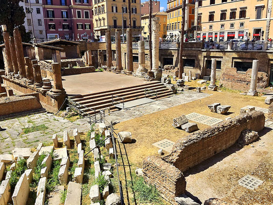 torre argentina cat sanctuary at largo di torre argentina rome italy