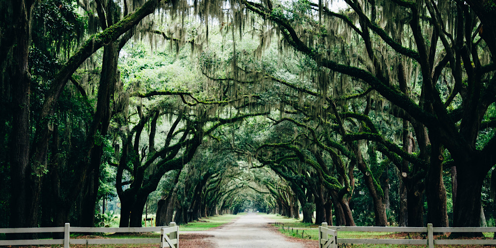 How to Best Experience the American South Without Stress