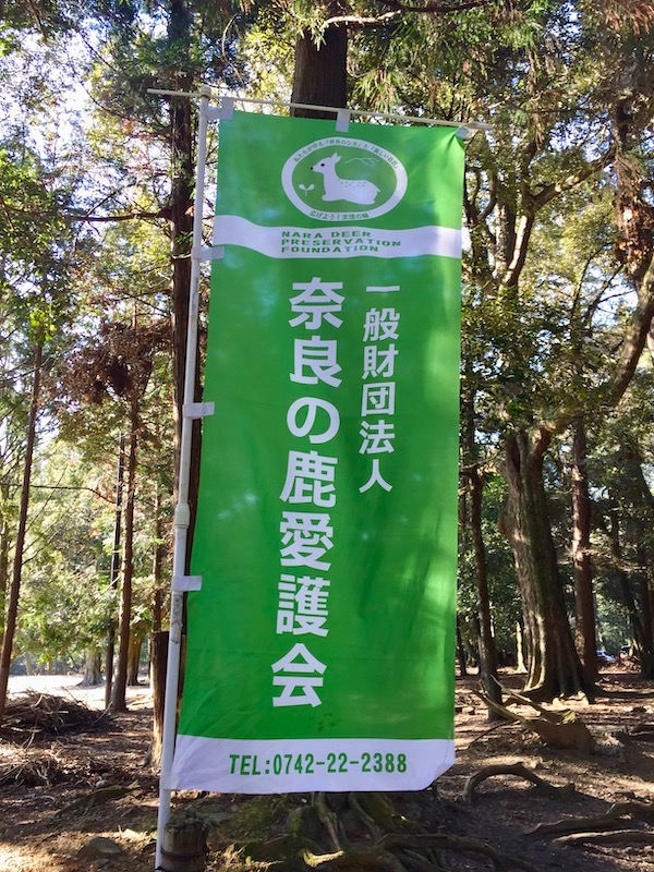 nara deer reservation foundation