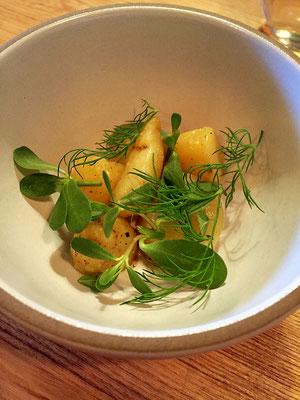 potato and yogurt farm spirit