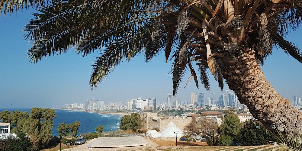 What I Ate in Tel Aviv