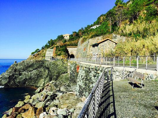 Cinque Terre walkway italy