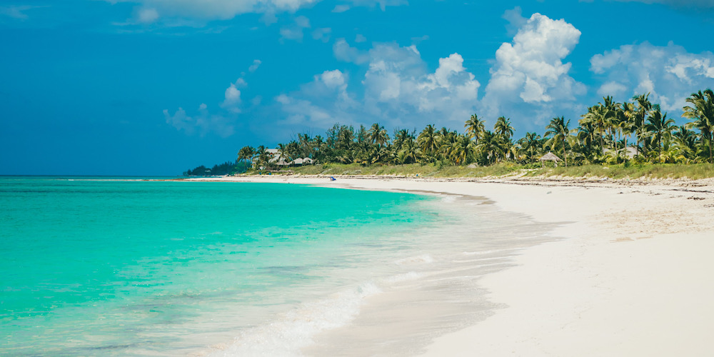 4 Nature Sights in The Bahamas
