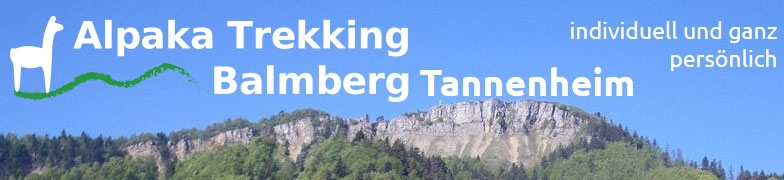 2 Webcams Balmberg klick