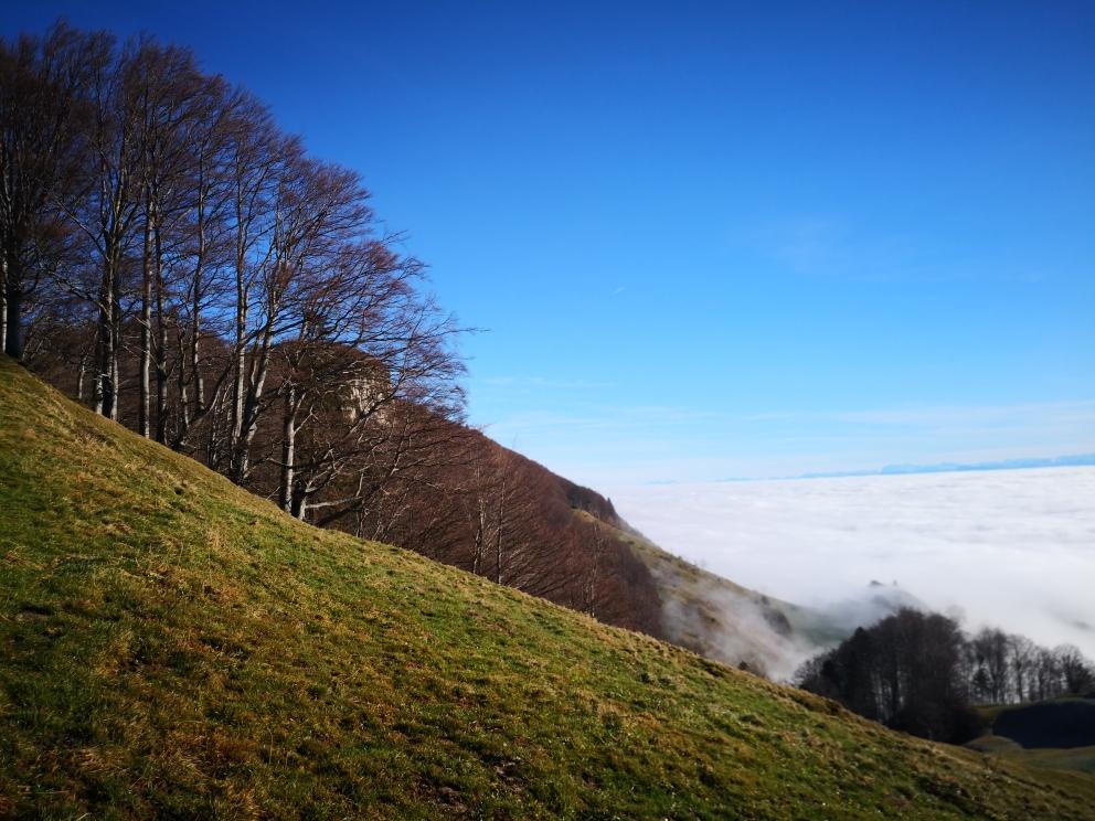 Herrliches Jura Winterwanderwetter
