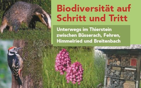 Waldwanderung Wasseramt - wandern Sie Deitingen Inkwil Burgäschisee und evt. noch einStück weiter!