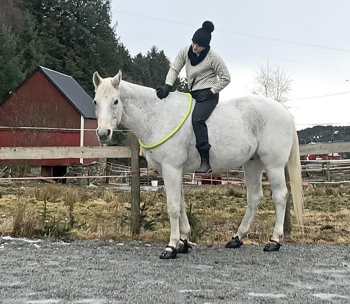 """Kari og Shan 22.01.2019 - kommunikasjon med hesten, """"horsemanship"""""""