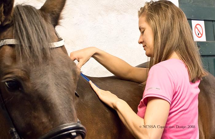 Saltilpasning og salsjekk - måling av hesteryggen