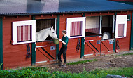 Stallplasser med moderne hestebokser ved Bergen