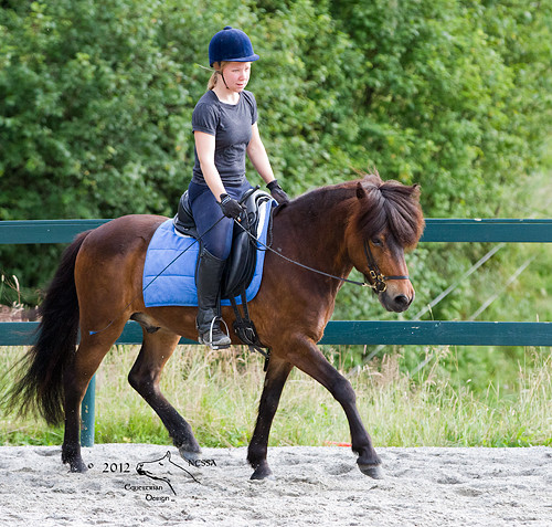 Kvalifisert rideundervisning sammen med saltilpasning