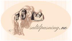 saltilpasning.no logo