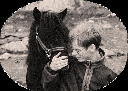 Saltilpasning for glade hester og ryttere