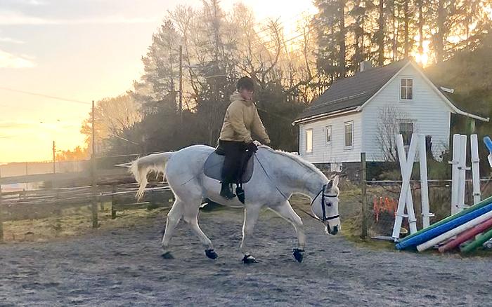 Shan og Kari 09.02.2019 - rehabilitering av hesteryggen